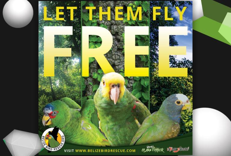 VbGP Sponsors a Sign Design to Belize Bird Rescue