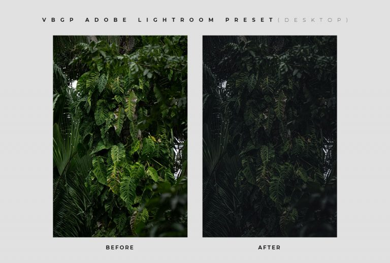 Some Darken Nature - FREE Lightroom Preset